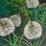 Bear Paw Grass Art Print