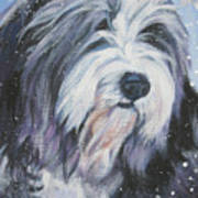 Bearded Collie In Snow Art Print