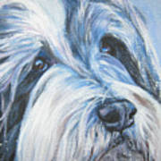 Bearded Collie Up Close In Snow Art Print