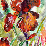 Bearded Iris Brown Sally Watercolor Art Print