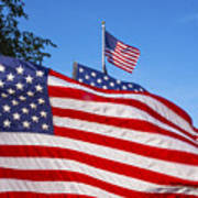 Beautiful American Flags Art Print