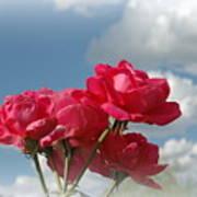 Beautiful Bouquet Of Roses Art Print