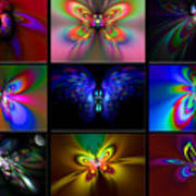 Beautiful Butterfly Collection Art Print