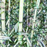 Beautiful Green Leaf Bamboo Art Print