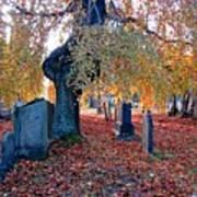 Beautiful Historic Camp Hill Cemetery Halifax Nova Scotia Art Print