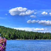 Beautiful Luby Bay On Priest Lake Art Print