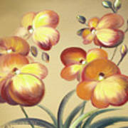 Beautiful Orchid Flowers Art Print