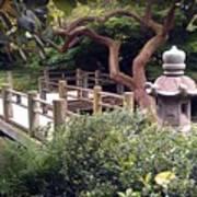 Beautiful Park In San Francisco Art Print