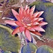 Beautiful Pink Lotus Abstract Art Print