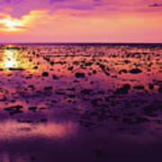 Beautiful Purple Sunset During Tide Shows Up Rocky Beach Art Print