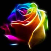 Beautiful Rose Of Colors No2 Print by Pamela Johnson
