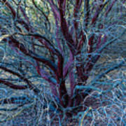 Beautiful Tree Art Print