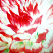 Beauty And The Flaming Tongue Art Print