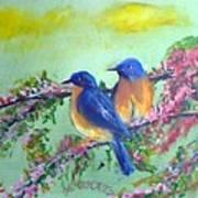 Beauty Of Birds Art Print