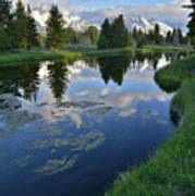 Beaver Dam At Schwabacher Landing Art Print