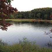 Beaver Lake With A Gentle Breeze Art Print