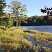 Beaver Lake Scenic View Art Print