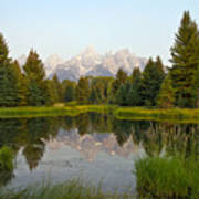 Beaver Pond At Schwabacher Landing Art Print