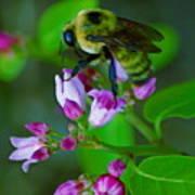 Bee Good 2 Art Print