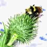 Bee-line 4 Art Print