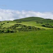 Beecraigs Hills. Art Print