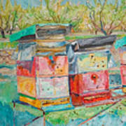 Beehives In Orchard Art Print