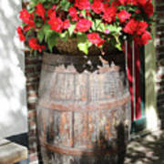 Begonias In The Barrel Art Print