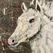 Behold A White Horse Art Print