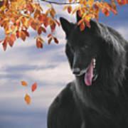 Belgian Shepherd With Autumn Leaves 2 Art Print