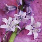 Bell Flowers Art Print
