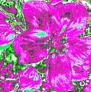 Bella Flora 2 Art Print