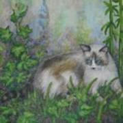 Bella With Ivy And Bamboo Art Print