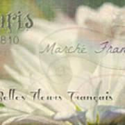 Belles Fleurs Art Print