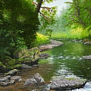 Below Drift Creek Falls Art Print