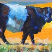 Belted Galloway Cow Side View Art Print