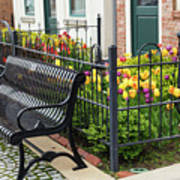 Bench By The Tulips Art Print