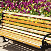 Bench In The Tulips Art Print
