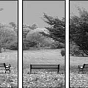 Bench View Triptic Art Print