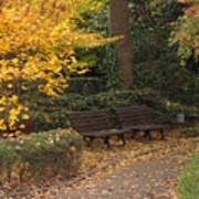 Benches In The Park Art Print