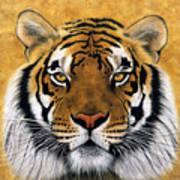 Bengali II Art Print by Lawrence Supino