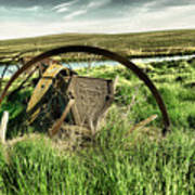 Bereft On The Grasslands T Art Print