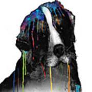 Bernese Mountain Dog Art Print