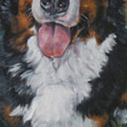 Bernese Mountain Dog Standing Art Print