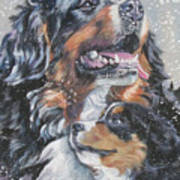 Bernese Mountain Dog With Pup Art Print