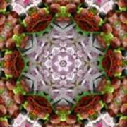 Berry Kaleidoscope Art Print