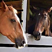 Best Friends Horse Chat Art Print