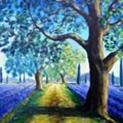 Between The Lavender Fields Art Print