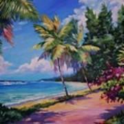 Between The Palms 20x16 Art Print