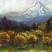 Beyond The Orchards Art Print