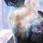 Beyond The Window Pane Art Print